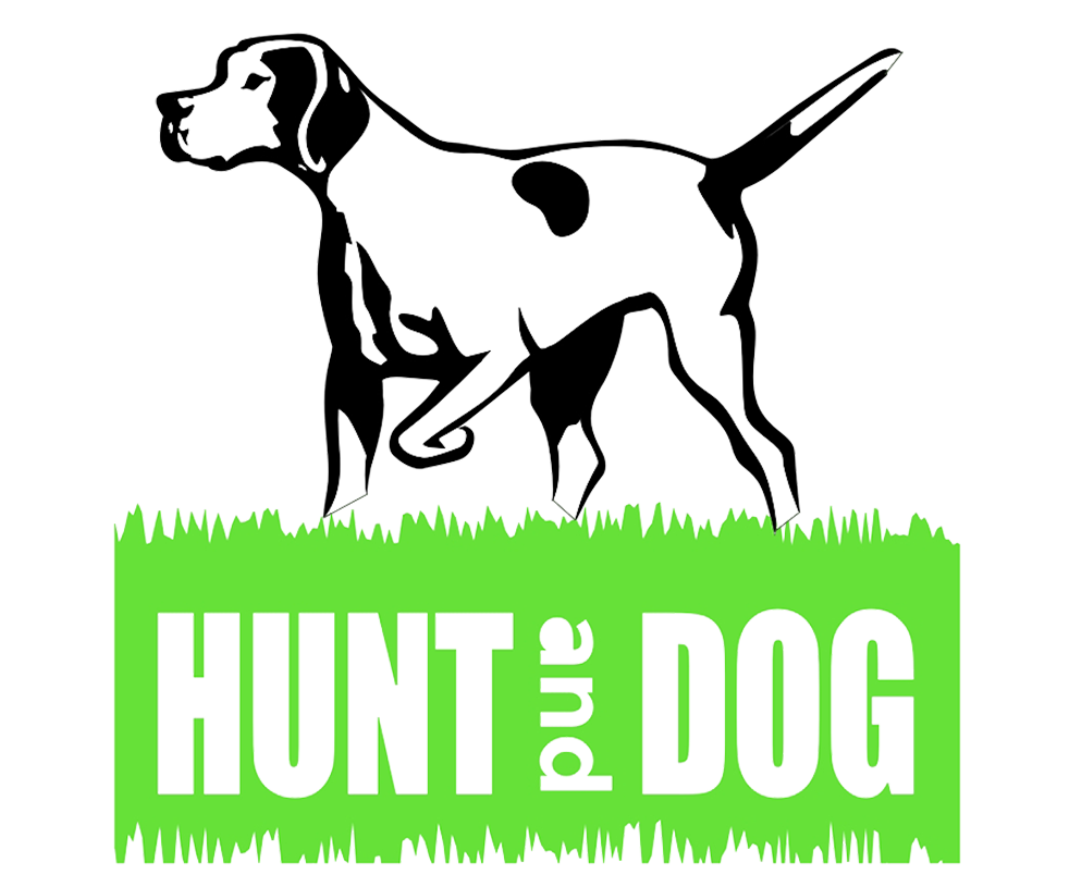 Hunt and Dog | Miriam Scherer